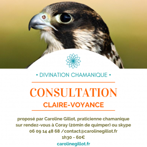 Fly-consultation-clairevoyance